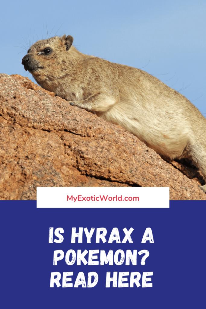 Is Hyrax a Pokemon